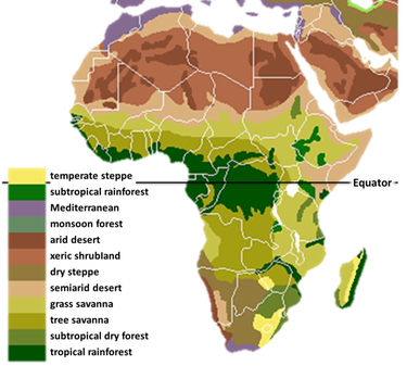 Unit 3: Ancient Africa - World History & Geography